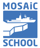 MOSAiC school icon