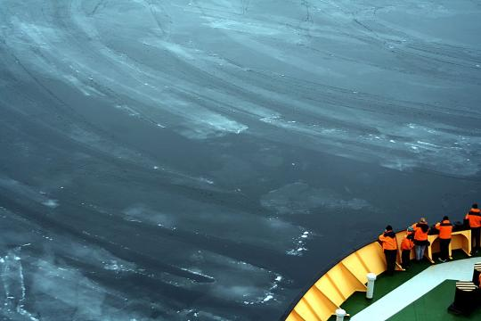 people looking over edge of ship into nilas sea ice